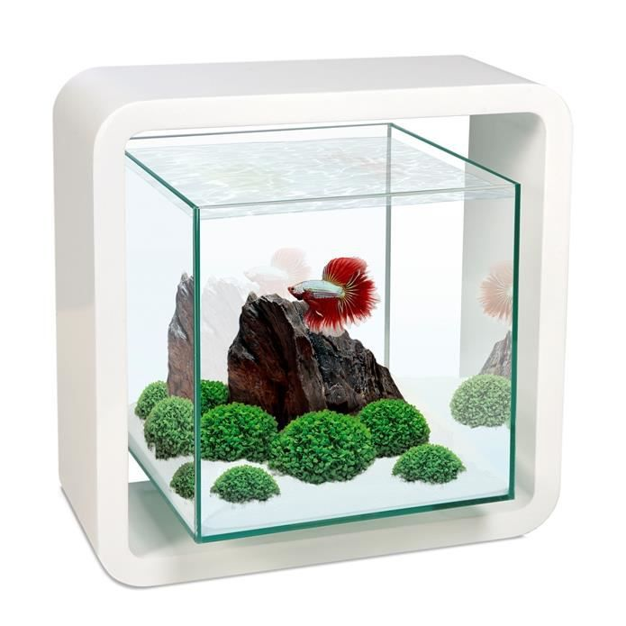 aquarium design poisson combattant 5 litres blanc achat vente aquarium aquarium design. Black Bedroom Furniture Sets. Home Design Ideas