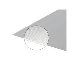 PLAQUE - BARDEAU Plaque polycarbonate alvéolaire 4mm - L: 2 m - l: