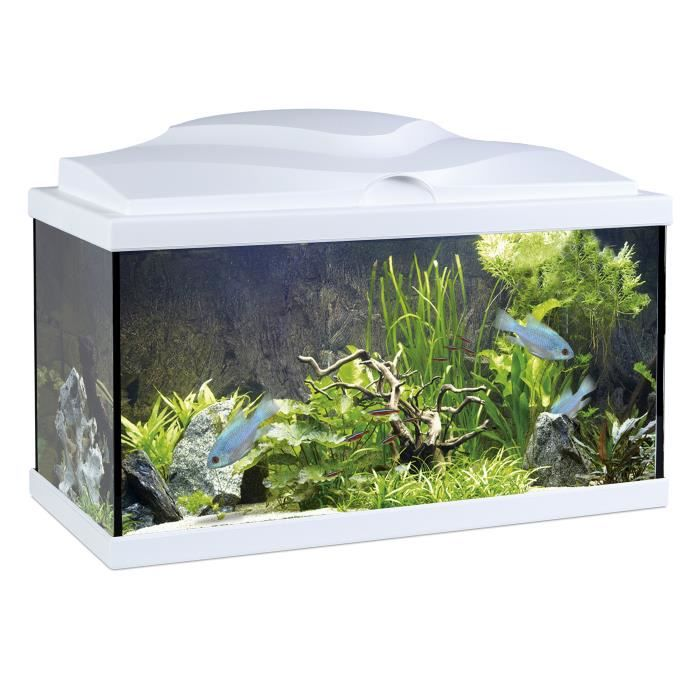 aqua 60 light blanc achat vente aquarium poissons. Black Bedroom Furniture Sets. Home Design Ideas