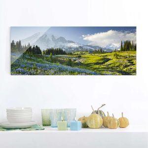CADRE PHOTO 40x100 cm verre image - prairie de montagne avec d