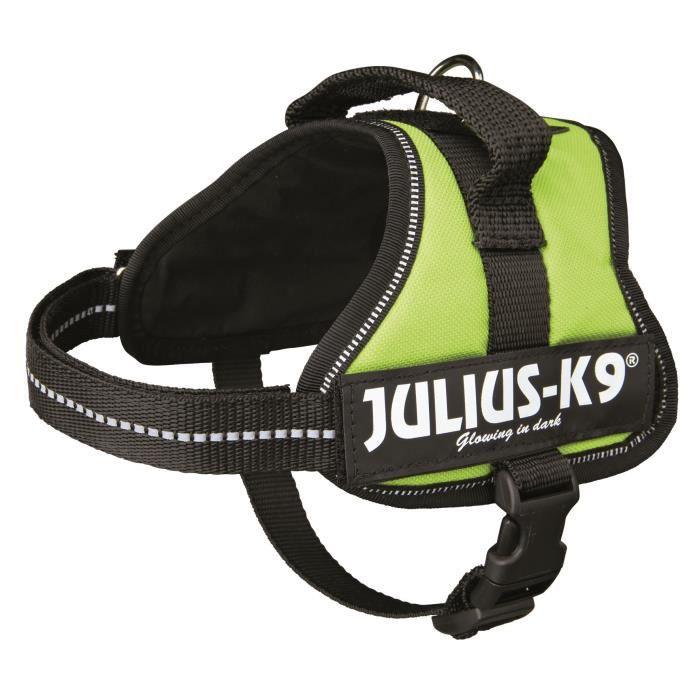 Harnais Power Julius-K9 - Mini-Mini - S : 40-53 cm-22 mm - Vert pastel - Pour chien