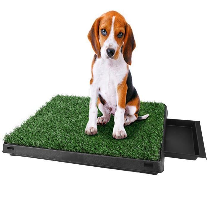 Tapis propreté alèse animaux Pet parc chien pot d'intérieur Grass Mat formation Pad pot toilette