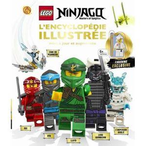 Lego Ninjago Livre