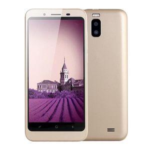 Téléphone portable Double caméra HD 4,7 pouces Android 4.4 WiFi GPS 5