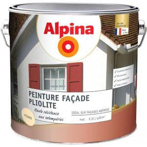 Peinture Facade Ton Pierre