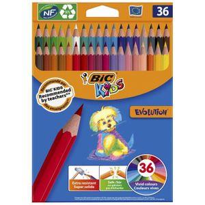CRAYON DE COULEUR BIC Kids Evolution ECOlutions Crayons de Couleur -