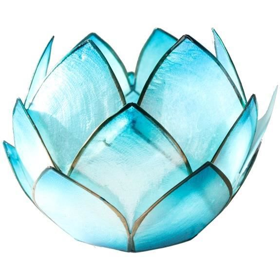 lotus crepuscule turquoise achat vente objet. Black Bedroom Furniture Sets. Home Design Ideas