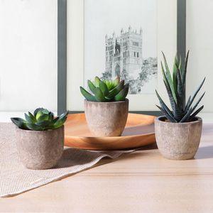 FONTAINE DE JARDIN 3pcs Décoratif Faux Succulentes Artificielles Succ