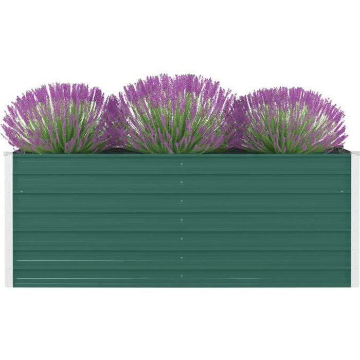 ZO5794Jardinière - Extérieur & Balcon - Balconnières Lit surélevé de jardin Pot de fleur Décor - Bac à fleurs Professionnel 160 x 80