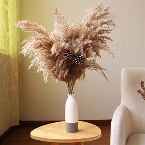PLANTE ARTIFICIELLE Lot de 10 plantes de pampas en herbe pour d&eacutecoration de maison, mariage, fleurs s&eacutech&eacutees1047