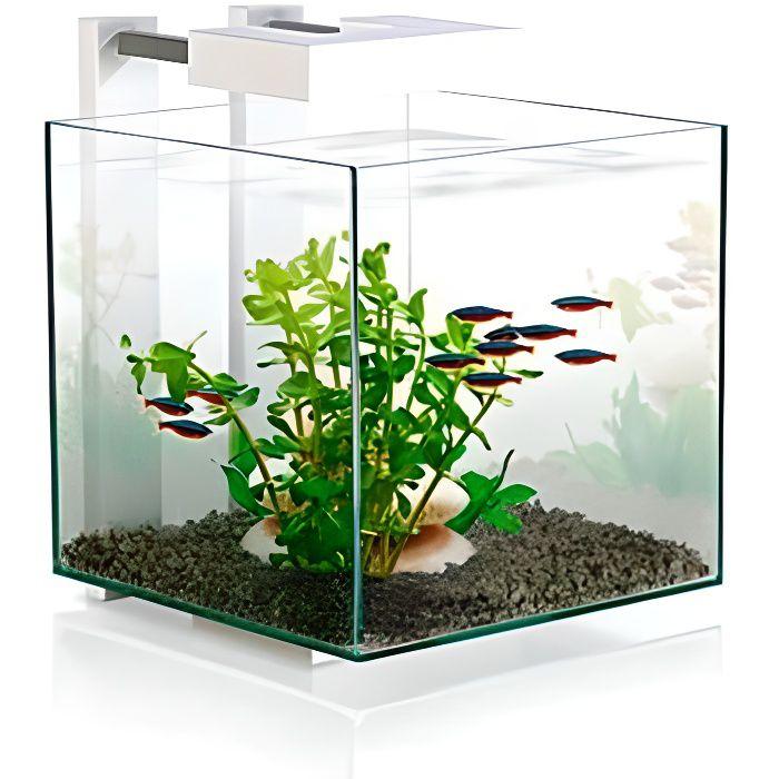 Aquarium Nexus Pure Cube