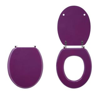 ABATTANT WC WIRQUIN - Abattant colors line prune