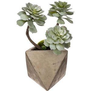 JARDINIÈRE - BAC A FLEUR Atmosphera - Plante grasse géométrique en pot H30