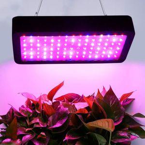 BULBE LED élèvent la lumière pour la meilleure croissanc
