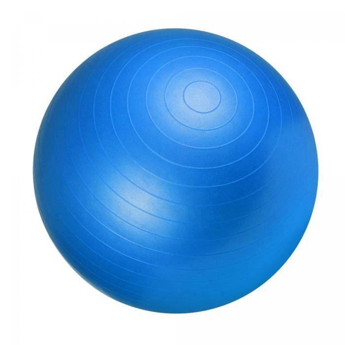 Ballon de gym 65cm