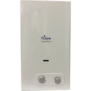 CHAUFFE-EAU TTulpe® Indoor B14 P37 Eco chauffe-eau à gaz propa