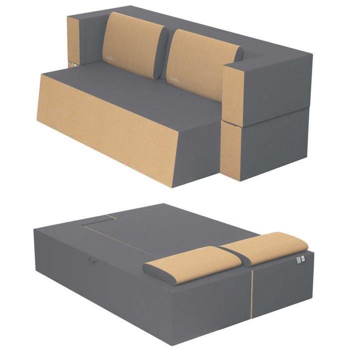 Canapé Lit Praticho Convertible Modulable Réversible 2 places -Tissu dehoussable et lavable Couleur Argent