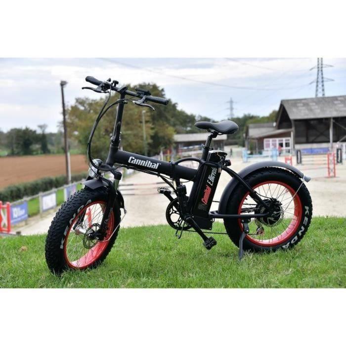 vélo a assistance électrique pliable haut gamme