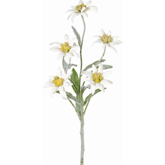 Edelweiss artificielle SOPHIA avec 5 fleurs, blanc, 40 cm - Fleur artificielle - Fausse fleur - artplants