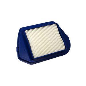 ASPIRATEUR TRAINEAU Filtre d'aspirateur pour Rowenta RO535301, HEPA