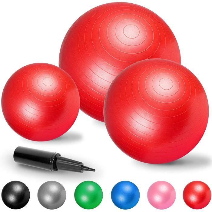 Gorilla Sports Swiss Ball - Ballon de Gym de Plusieurs Tailles 55cm, 65cm, 75cm et en Couleurs : Bleu, Gris, Fuchsia, Noir, Rouge, V