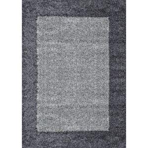 TAPIS VEGA Tapis de salon Shaggy - 120 x 170 cm - Gris