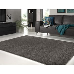 tapis salon rouge et gris achat vente tapis salon. Black Bedroom Furniture Sets. Home Design Ideas