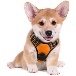 HARNAIS ANIMAL Harnais Chien / Gilet pour chien- Orange taille S