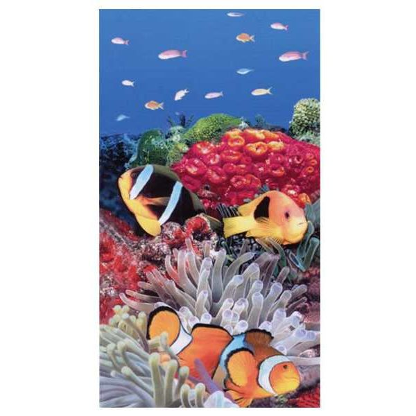 Drap de plage poissons clown 100 x 180 achat vente for Poisson clown achat