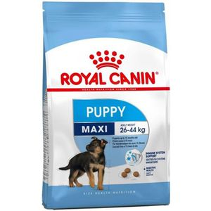 CROQUETTES Royal Canin Maxi Junior 15 kg