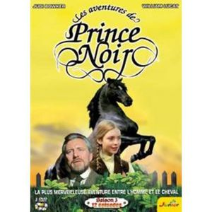 DVD SÉRIE LCJ 1001716 - DVD SERIE TV - Les aventures de Prin
