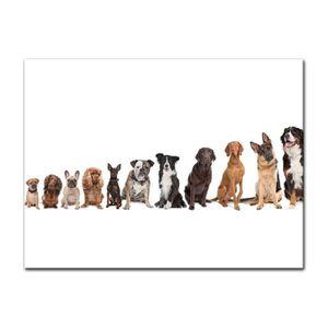Personnalisé de terre-neuve terre-neuvien chien saint-valentin fête mères anniversaire etc carte