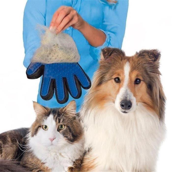 Gant doux et efficace Toilettage de chien brossage (1 paire)