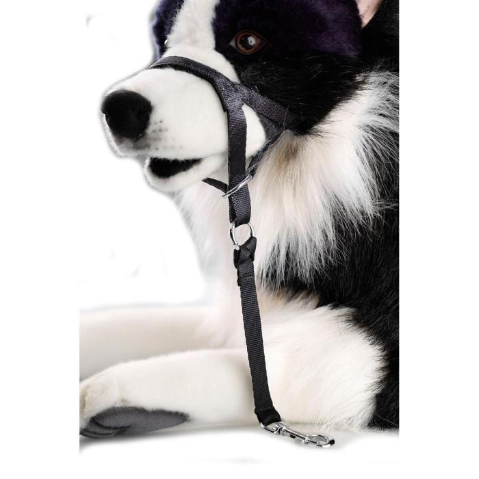 D&D Licol L - 42-56x7x41cm - Noir - Pour chien