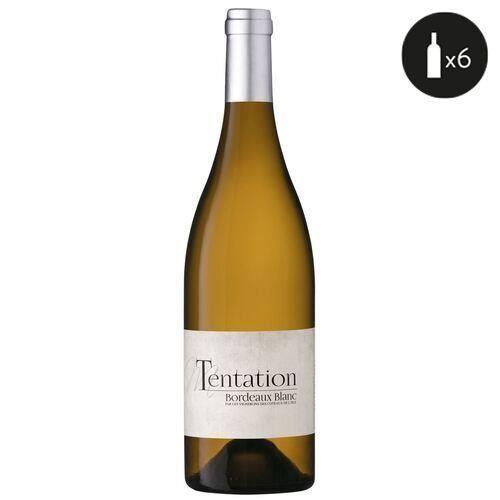 6 bouteilles - Vin blanc - Tranquille - Les Vignerons des Coteaux de l'Isle TENTATION Bordeaux Blanc 2019 6x75cl