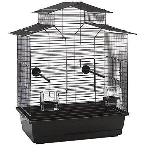 Cage oiseaux 2 for Cages a oiseaux decoratives