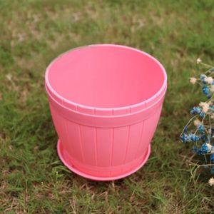 Auto Watering Animal planteuse d/'Absorption d/'Eau Jolie Plante En Pot Bonsai Décor Cadeau