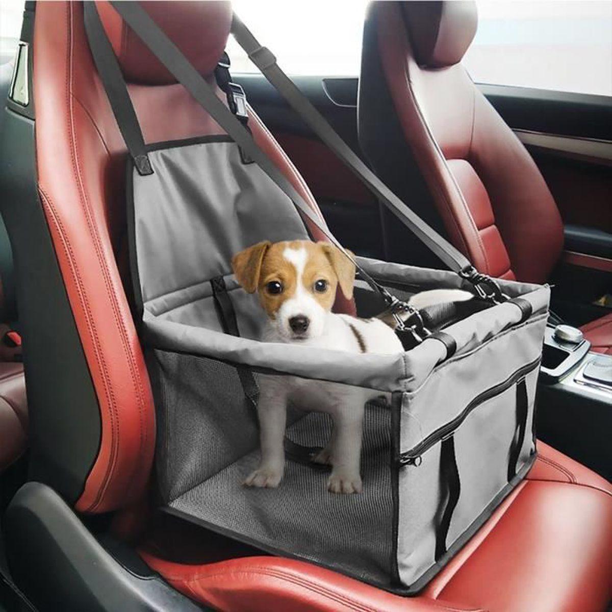 Siege voiture pour chien