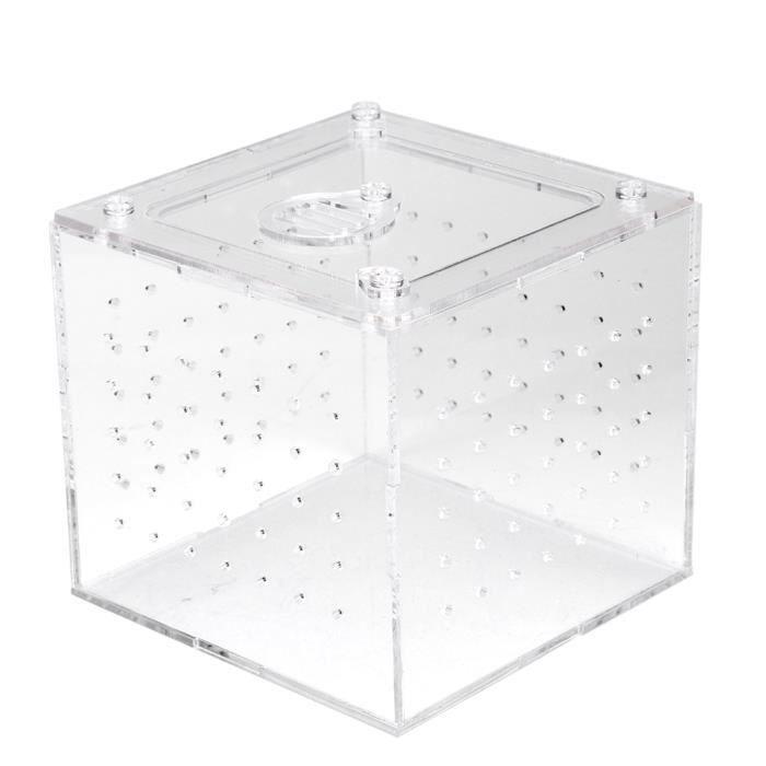 Boîte d'élevage de serpents, boîte d'élevage, acrylique robuste pour tarentules geckos