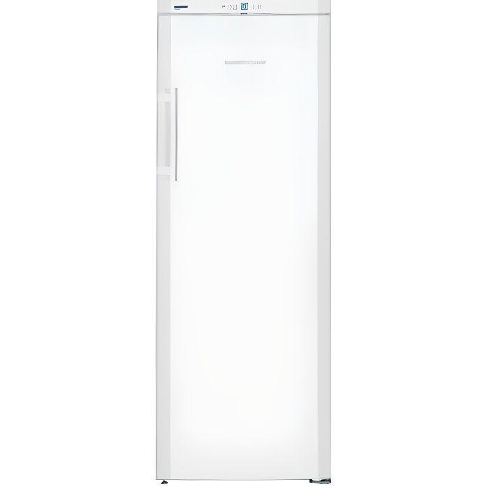 Congélateur armoire GP2733-21
