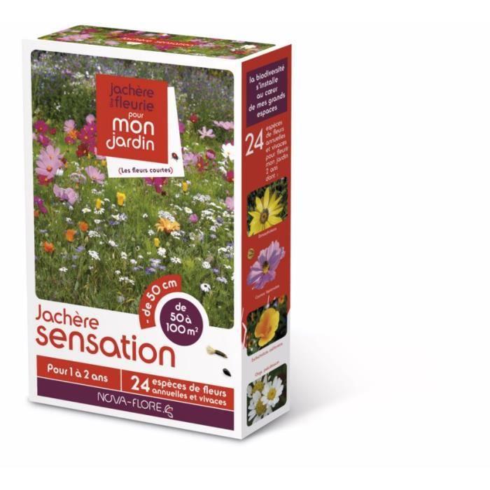 Prairies fleuries : modéle Sensation 100 m2