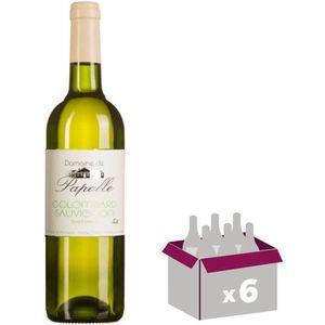 VIN BLANC Domaine de Papolle 2017 Côtes de Gascogne - Vin bl