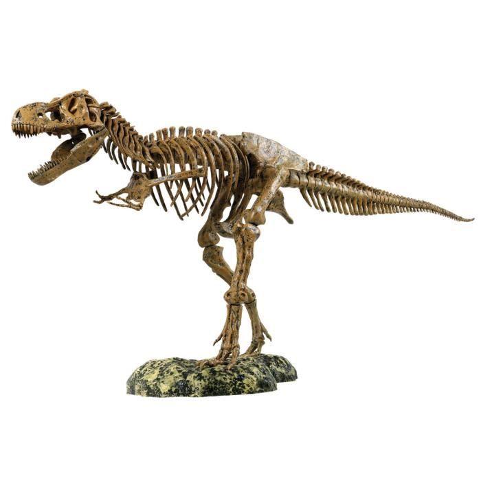 squelette T-Rex 1WE5D8