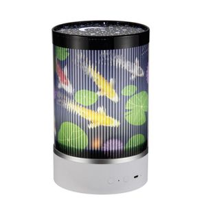 Gro Egg 2 unique couleur changeante salle Thermomètre et veilleuse NEUF