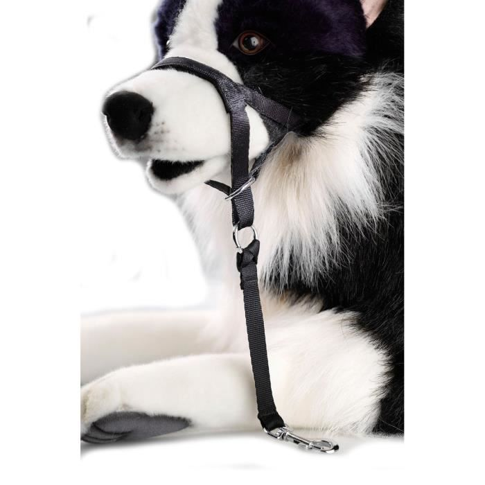 D&D Licol XXL - 51-68x10x56cm - Noir - Pour chien