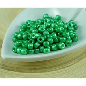 vert foncé a 5 g vert prairie Miyuki Delica Beads environ 11//0 1,6 mm vert clair
