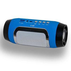 ENCEINTE NOMADE Mini Enceinte Bluetooth Sans-Fil Portable FM Radio