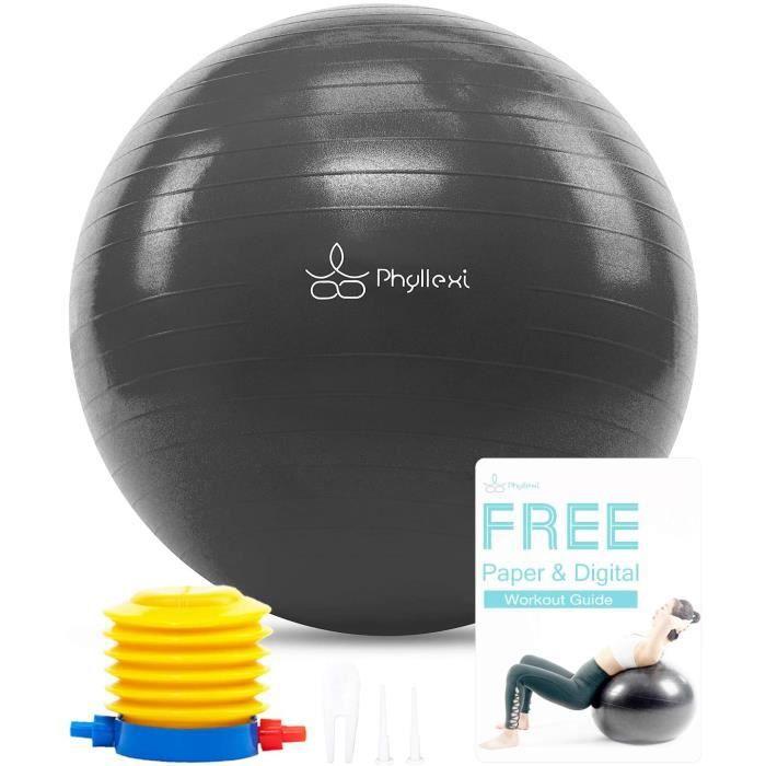 Ballon Fitness - Haute Gamme 85CM 75CM 65CM 55CM Anti-Éclatement Swiss Ball pour Yoga, Pilates Grossesse Exercice, Inclus Pompe[97]