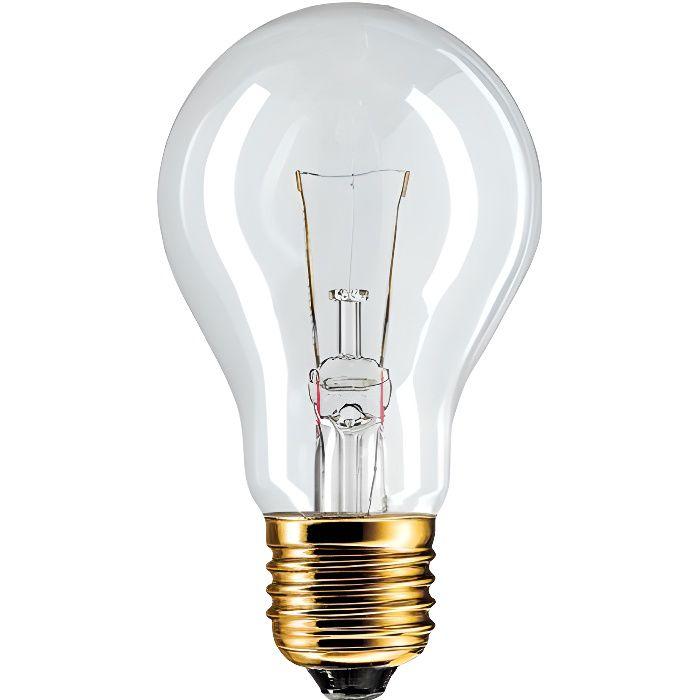 Ampoule E27 A60 60w 24 volts
