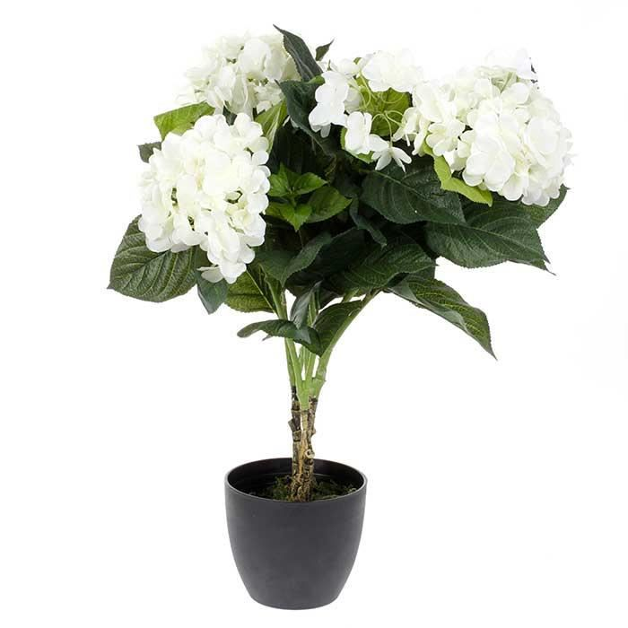 plante artificielle hortensia fleurs blanches achat vente fleur artificielle cdiscount. Black Bedroom Furniture Sets. Home Design Ideas